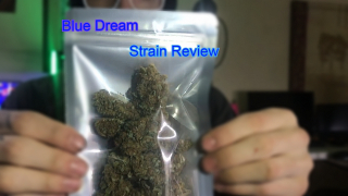 (Strain Review) Blue Dream