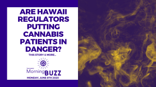 ARE HAWAII REGULATORS PUTTING CANNABIS PATIENTS AT RISK? | TRICHOMES Morning Buzz