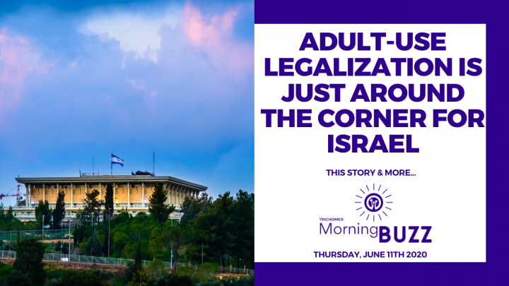 ADULT-USE LEGALIZATION IS JUST AROUND THE CORNER FOR ISRAEL | TRICHOMES Morning Buzz