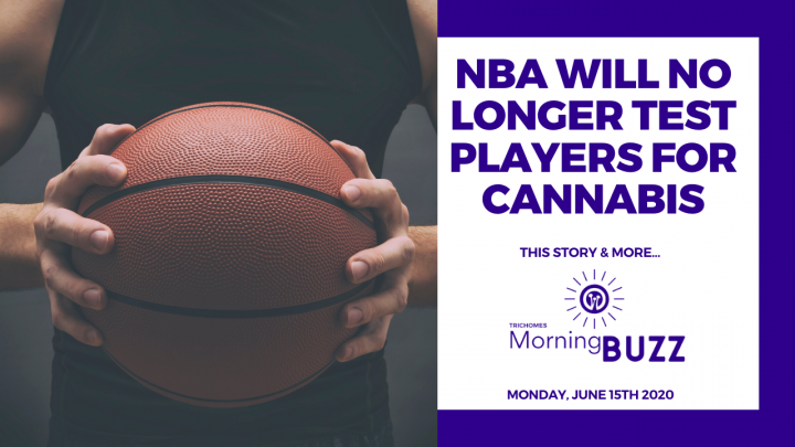 NBA WILL NO LONGER TEST PLAYERS FOR CANNABIS | TRICHOMES Morning Buzz