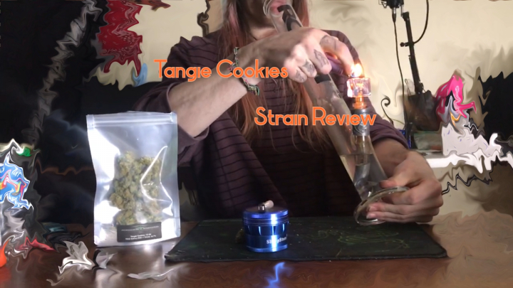 (Strain Review) Tangie Cookies