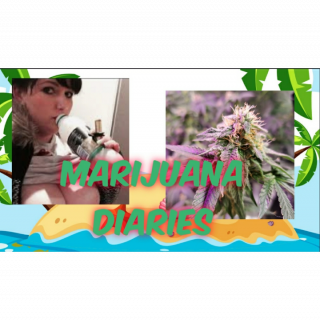 Marijuana Diaries having fun with Marijuana