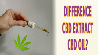 what's the difference between CBD extract and CBD oil?