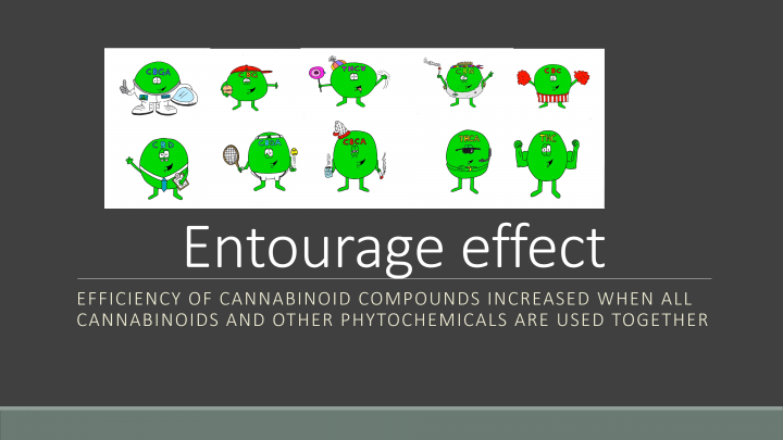 Cannabinoids -- An Illustrated Guide !!!!