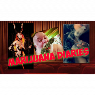 Mr Foxx Marijuana Diaries