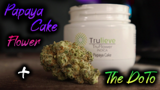 Trulieve's Papaya Cake Flower + Checking out the DoTo! Save those Green Hits! || FLMMJ