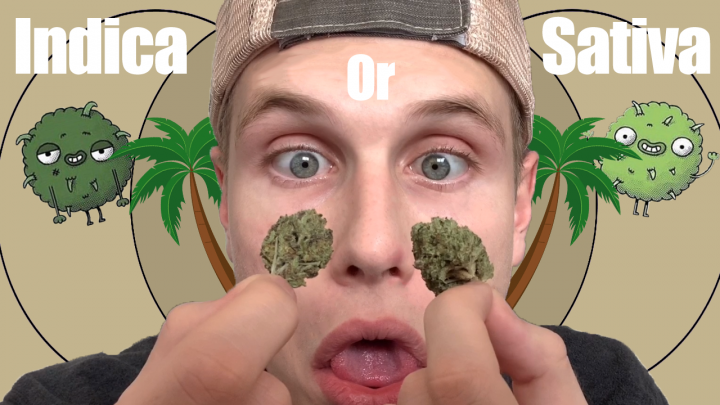 Indica vs. Sativa - Which do I prefer? (w/ Chase)(First Video on Weedtube!)