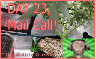 Day 23 of Flower | Mail Call | Growing Under Mars Hydro | TWTGC
