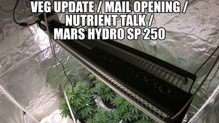 Veg Update / Mail Opening / Nutrient Talk / Mars Hydro SP 250