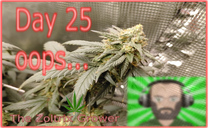 Day 25 Flower | Deficiency Analysis | Growing Under Mars Hydro | TWTGC
