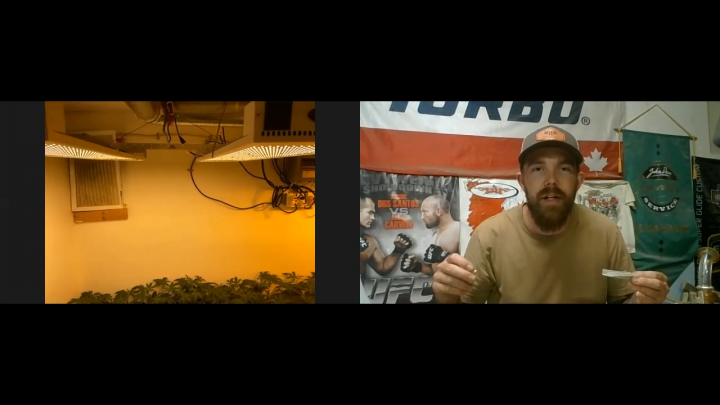 Larger Legal Weed Grow-op