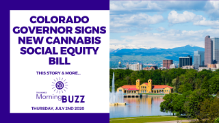 COLORADO GOVERNOR SIGNS NEW CANNABIS SOCIAL EQUITY BILL | TRICHOMES Morning Buzz