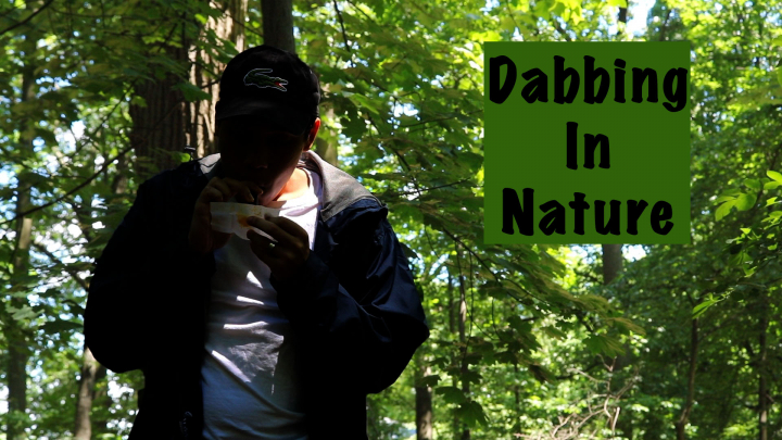 Dabbing In Nature