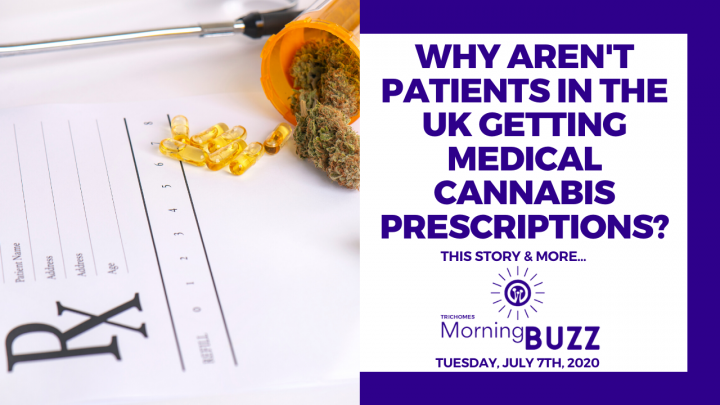 WHY AREN'T PATIENTS IN THE U.K. GETTING MEDICAL CANNABIS PRESCRIPTIONS? | TRICHOMES Morning Buzz