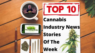 Top 10 Marijuana And Psychedelics Industry News Stories Of The Week