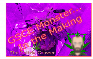 Monster in the Making! | Girl Scout Cookies Extreme | Growing Under Mars Hydro | TWTGC