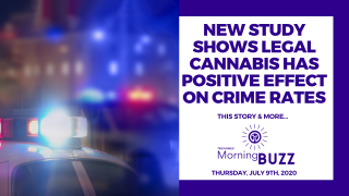 NEW STUDY SHOWS LEGAL CANNABIS HAS POSITIVE EFFECT ON CRIME RATE | TRICHOMES Morning Buzz