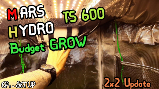 Mars Hydro 2x2 Grow tent + TS 600 Light || Set up and review || Ep 1