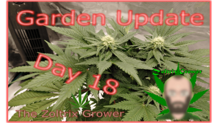 GSCE Day 18 of Flower | Garden Update | Growing Under Mars Hydro |TWTGC
