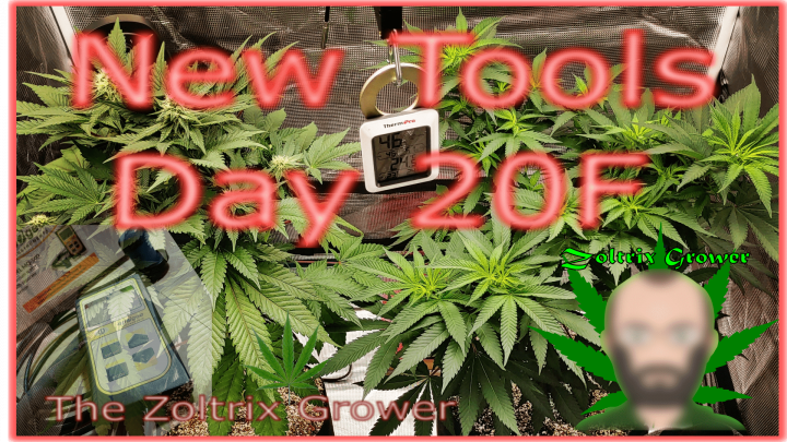 Dialing In My Grow | New Tool Test and Review | TWTGC