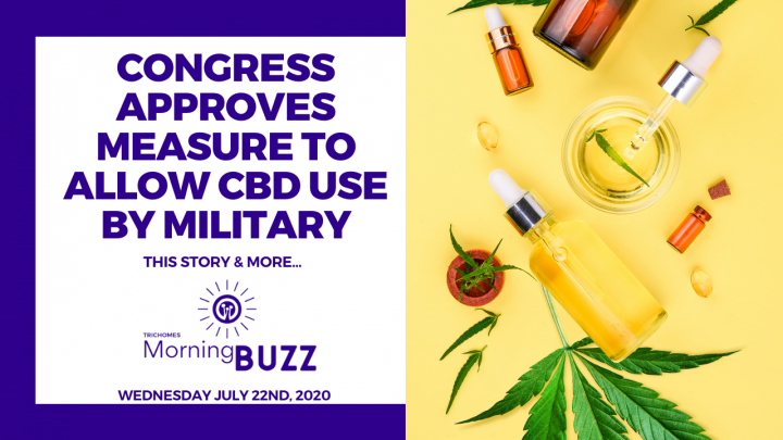 CONGRESS APPROVES MEASURE TO ALLOW CBD USE BY MILITARY | TRICHOMES Morning Buzz