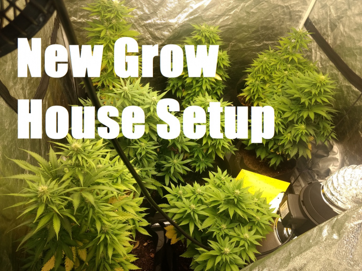 Setting Up A Whole New Cannabis Grow