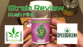Kush Mint (AAAA) from SpeedGreens - Strain Review