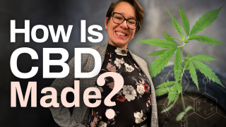 How Is Cannabidiol Made? (Where Does CBD Come From?)