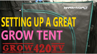 Setting up a great grow tent!!! Mars-Hydro!!!
