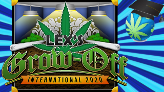 Lex's Grow-Off International 2020 COMPETITION! - Intro, Entry Rules & Judging
