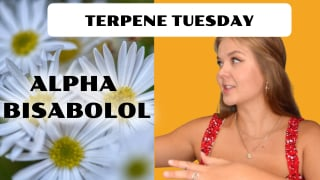 Alpha Bisabolol Terpene Effects | Terpene Tuesday (Epi.11)