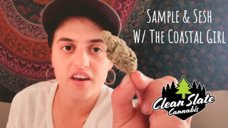 Sample & Sesh #16: SOUR ANIMAL by CLEAN SLATE CANNABIS