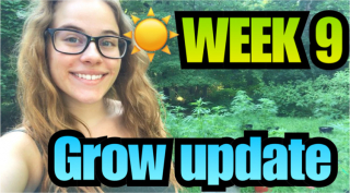 Week 9 Grow Update |Brittany Allison