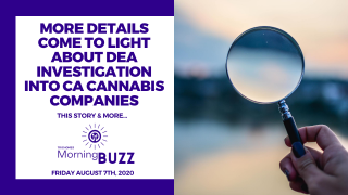 MORE DETAILS SURFACE ABOUT D.E.A. INVESTIGATION INTO CA CANNABIS COMPANIES | TRICHOMES Morning Buzz