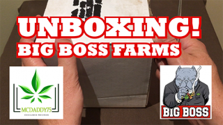 Unboxing - My BIG BOSS FARMS Package - Mail Order Marijuana