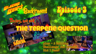 BACKROOM EPISODE 3!! || TERPENE VS. THC?