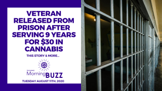VETERAN RELEASED FROM PRISON AFTER 9 YEARS FOR $30 WORTH OF CANNABIS | TRICHOMES Morning Buzz
