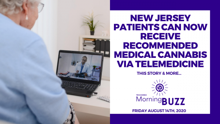 NEW JERSEY PATIENTS CAN NOW RECEIVE MEDICAL CANNABIS REC'S VIA TELEMEDICINE | TRICHOMES MORNING BUZZ