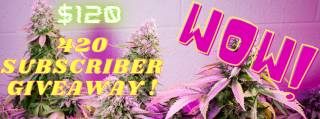 420 SUBSCRIBER GIVEAWAY !!