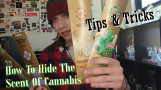 How to Hide the smell of Cannabis (Tips and Tricks)