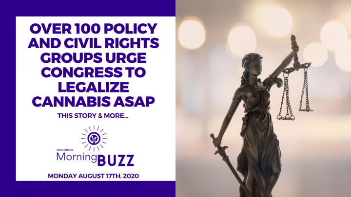 OVER 100 CIVIL RIGHTS GROUPS URGE CONGRESS TO LEGALIZE CANNABIS ASAP | TRICHOMES MORNING BUZZ