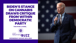 BIDEN'S STANCE ON CANNABIS DRAWS CRITIQUE FROM WITHIN DEMOCRATIC PARTY | TRICHOMES Morning Buzz