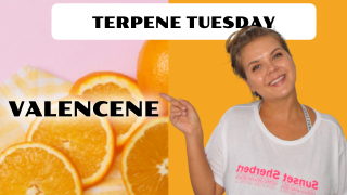 Valencene Terpene Effects | Terpene Tuesday (Epi 14)