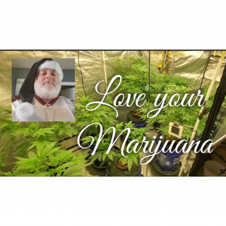 For the love of Marijuana