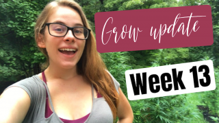 Grow Update Week 13 |Brittany Allison
