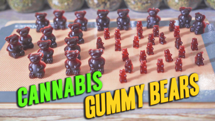 How to make Cannabis Gummy Bears using CannaOil