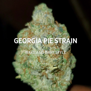GEORGIA PIE STRAIN WAKE AND BAKE STYLE