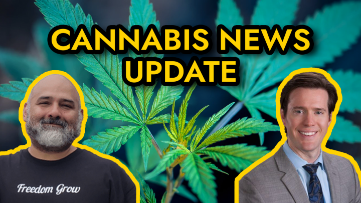 Cannabis Legalization News Update - Mississippi to vote on medical marijuana, Navy bans CBD products, and more