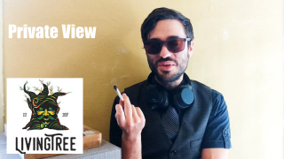 Private View: Living Tree: Strawberry Guava Strain Review