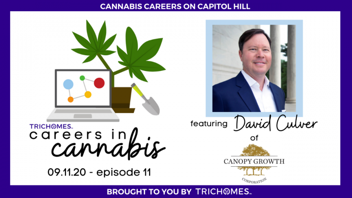 CANNABIS CAREERS ON CAPITOL HILL - CAREERS IN CANNABIS W/ DAVID CULVER OF CANOPY GROWTH CORPORATION